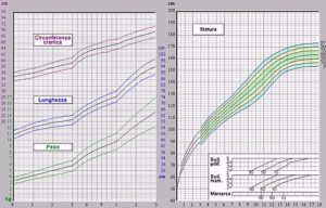 grafico2